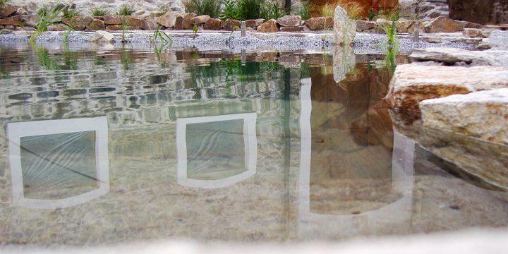 Wasser: Schwimmteich im Close-Up!
