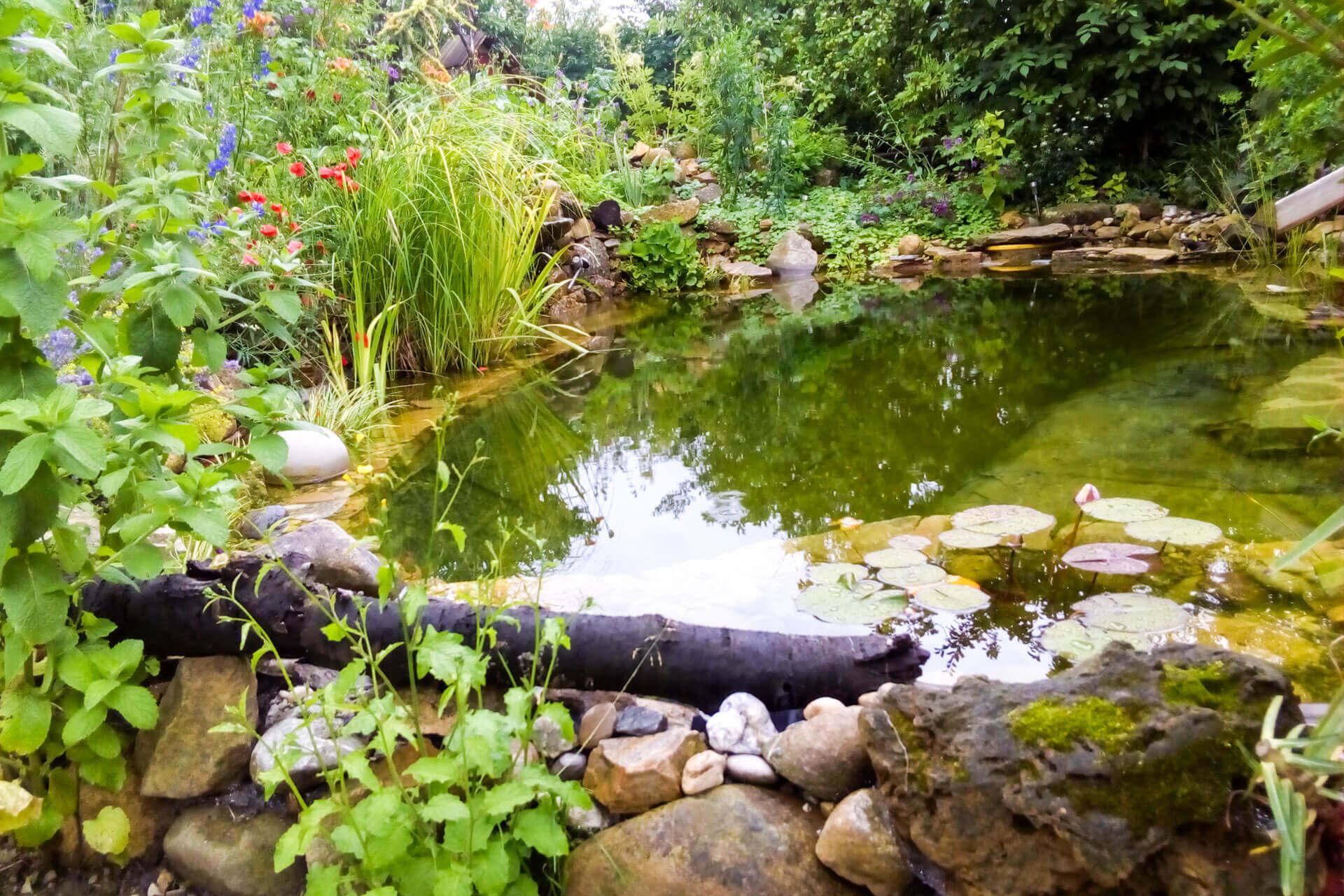 Ganzheitliche Gartengestaltung