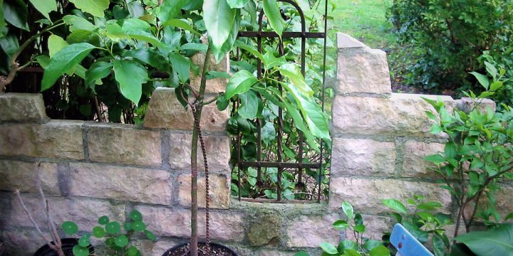 Stein: Kalksteinmauer mit Durchblick