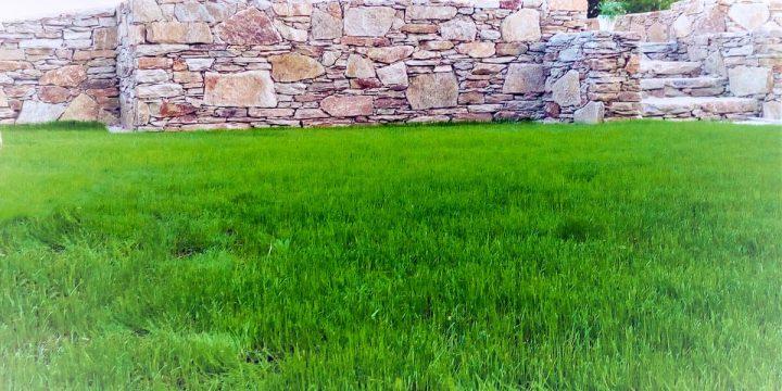 Stein: Eine Natursteinmauer mit bepflanzter Mauerkrone