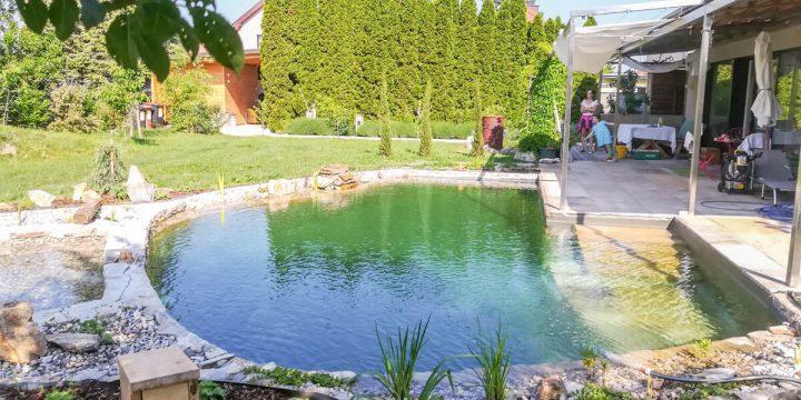 Wasser:  Biopool mit Sandsteinstufen
