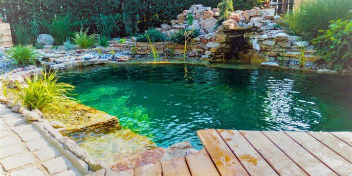Wasser: Umsetzung eines naturnahen Schwimmteichs